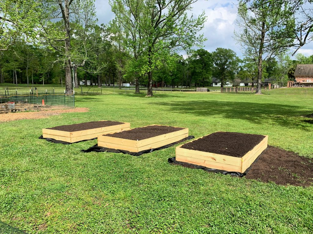 3 raised garden beds filled with soil