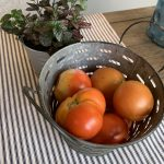 summer tomatoes after being hand picked